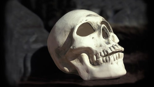 skull replica at ghost tour in New Orleans