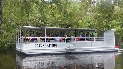 boat tour to the Louisiana Wetlands