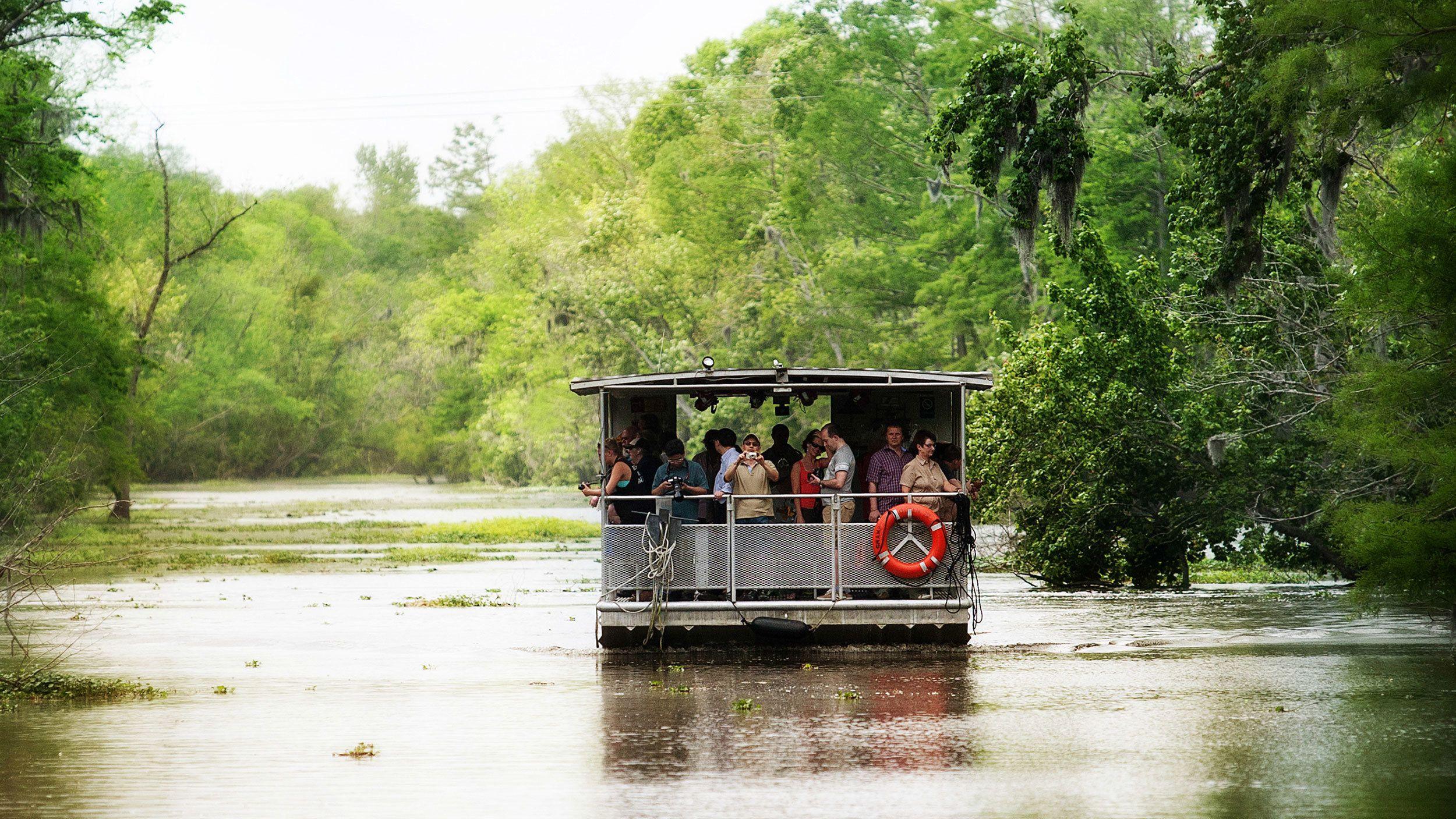 swamp boat on lake in bayou in New Orleans