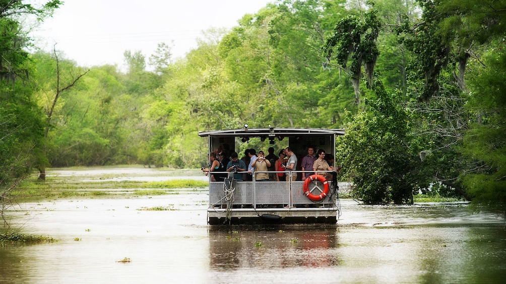 Show item 2 of 10. swamp boat on lake in bayou in New Orleans