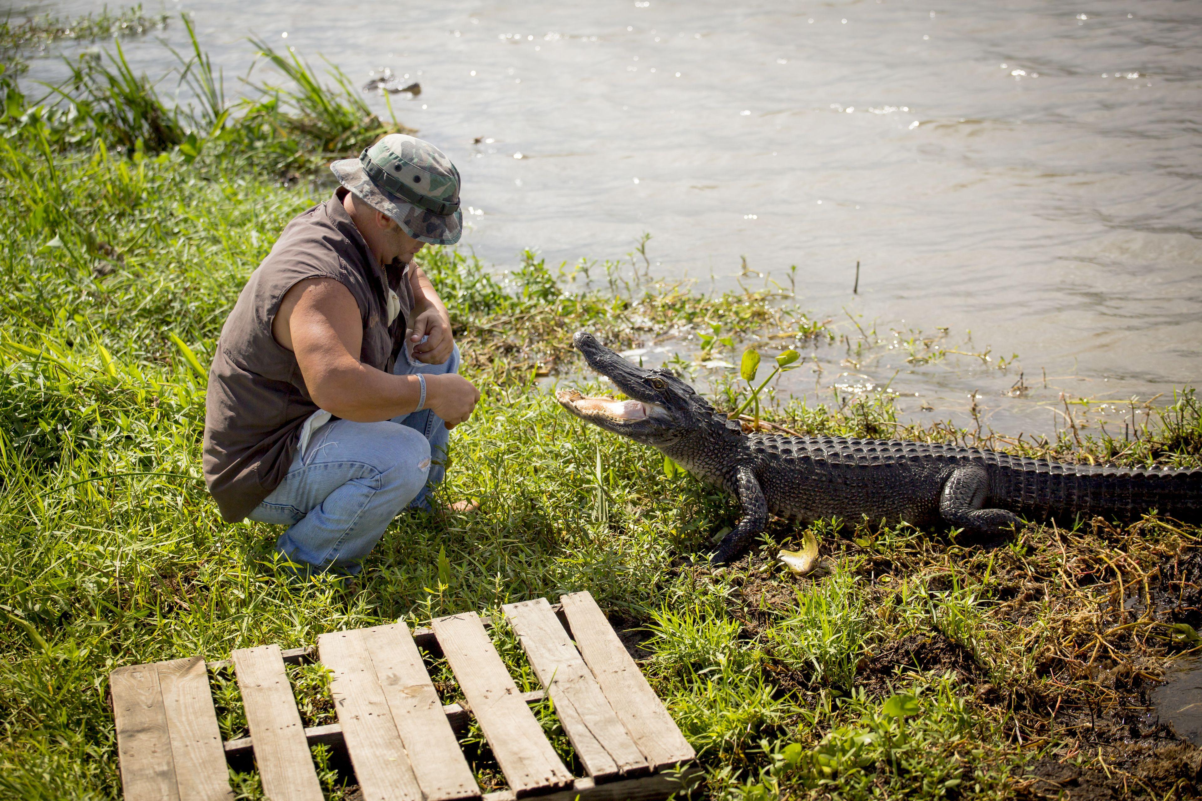 swamp2r15-106.jpg