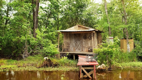 old shack and pier in bayou swamp in New Orleans