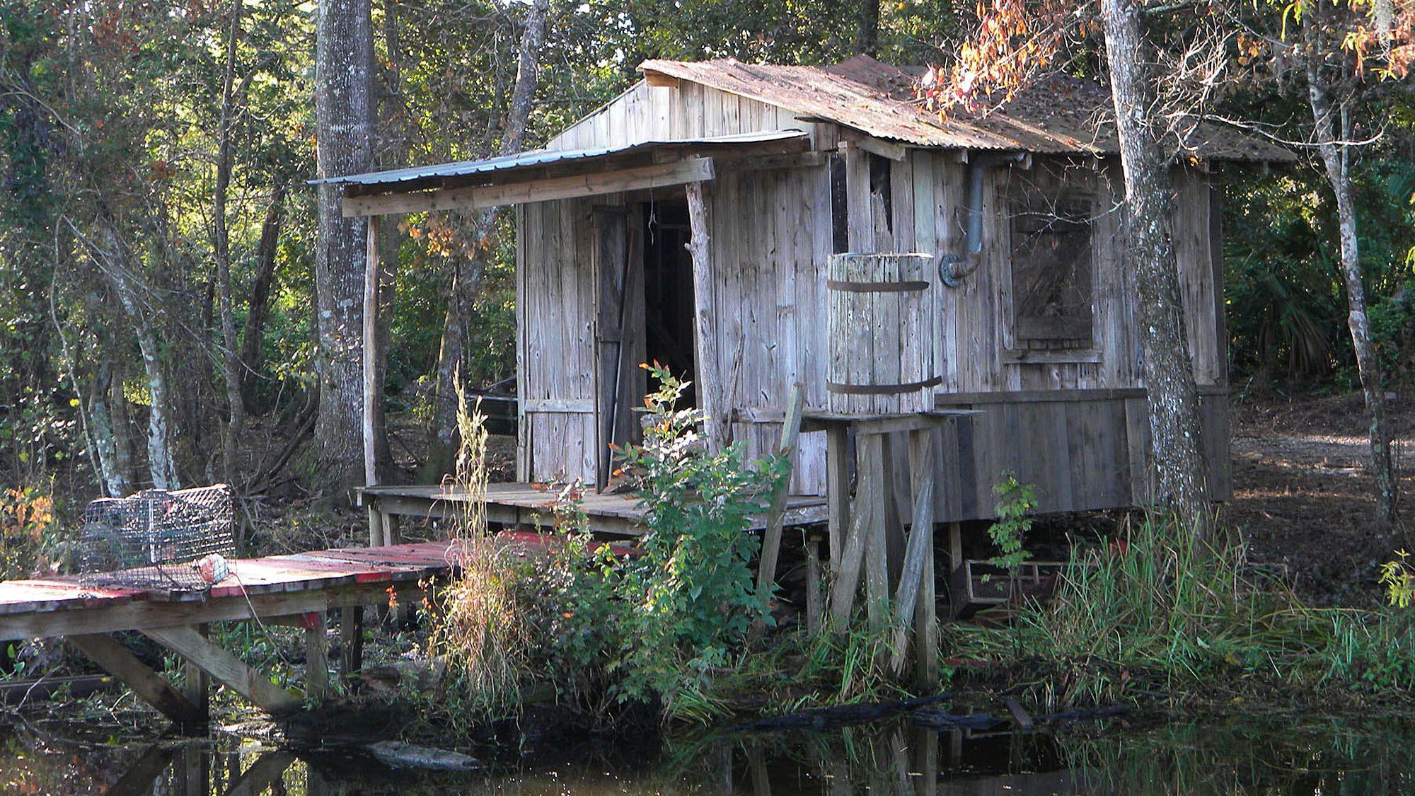 Jean Lafitte Swamp & Bayou Boat Tour