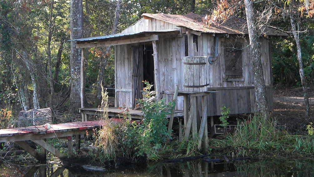 Show item 2 of 6. old shack in swamp lands of New Orleans