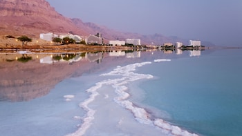 Full-Day Dead Sea Relaxation Tour from Jerusalem