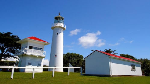 Lighthouse on Tiritiri Matangi Island
