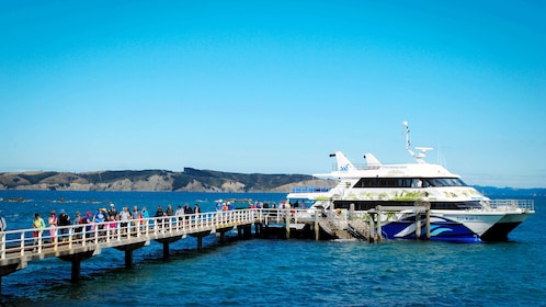 Cruise boat docked at the end of a long pier off of Tiritiri Matangi Island