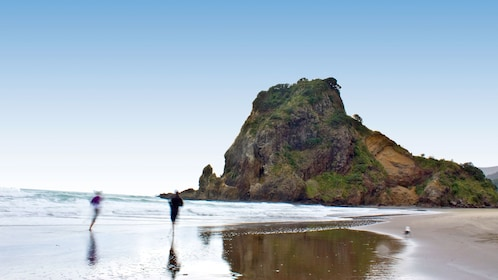 People running along the shore next to Lion Rock at Piha black sand beach in Auckland