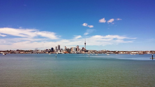 Seascape with the city of Auckland in the distance