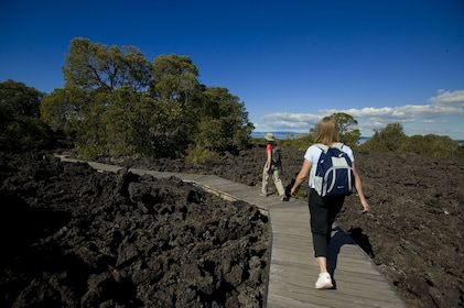 Rangitoto Volcanic Explorer Half-Day Tour