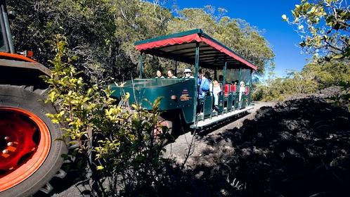 Road train passengers on a tour of Rangitoto Island