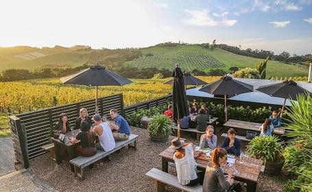 Waiheke Island Afternoon Wine Tasting Tour