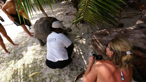 People with tortoise on a beach
