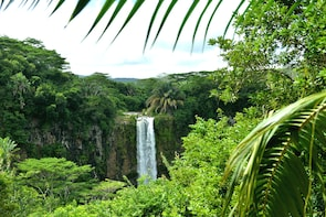 Full Day Guided Tour: Chamarel & The Wild Southwest