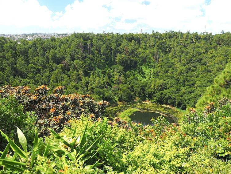 Apri foto 3 di 10. Full Day Guided Tour: Chamarel & The Wild Southwest