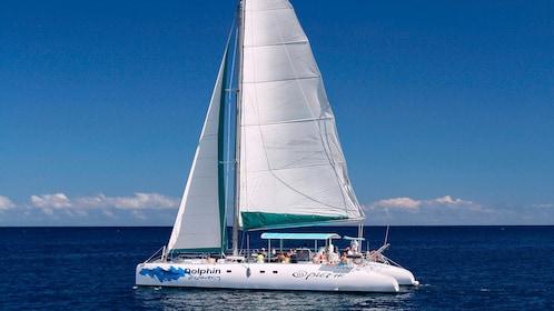 white catamaran setting sail in Mauritius
