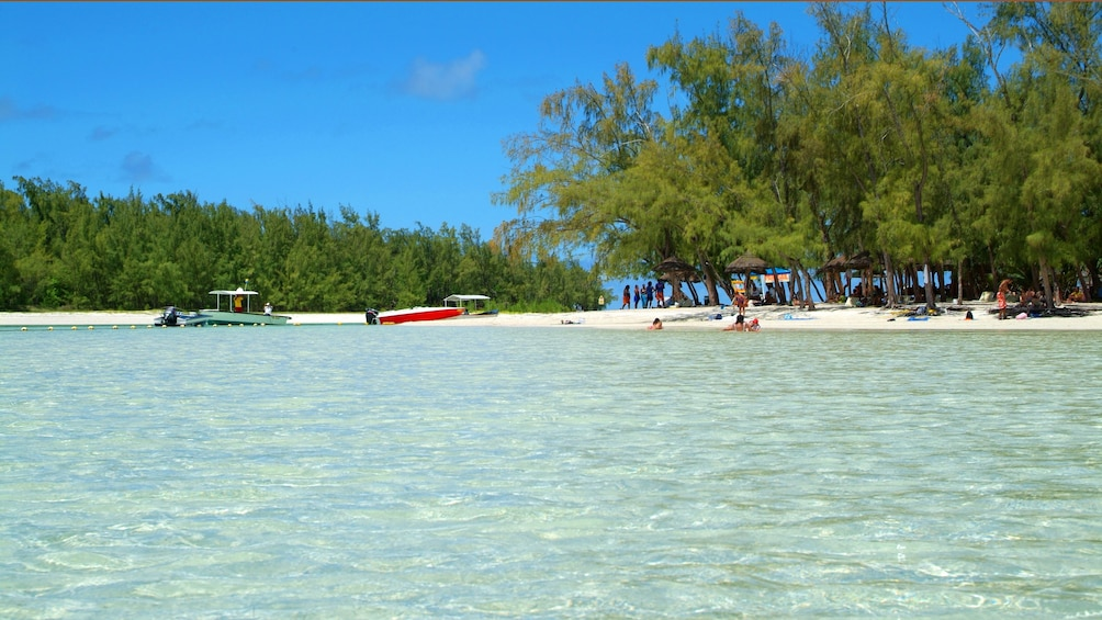 Charger l'élément 5 sur 5. beachgoers enjoying the sun and shallow waters at Ile aux Cerfs