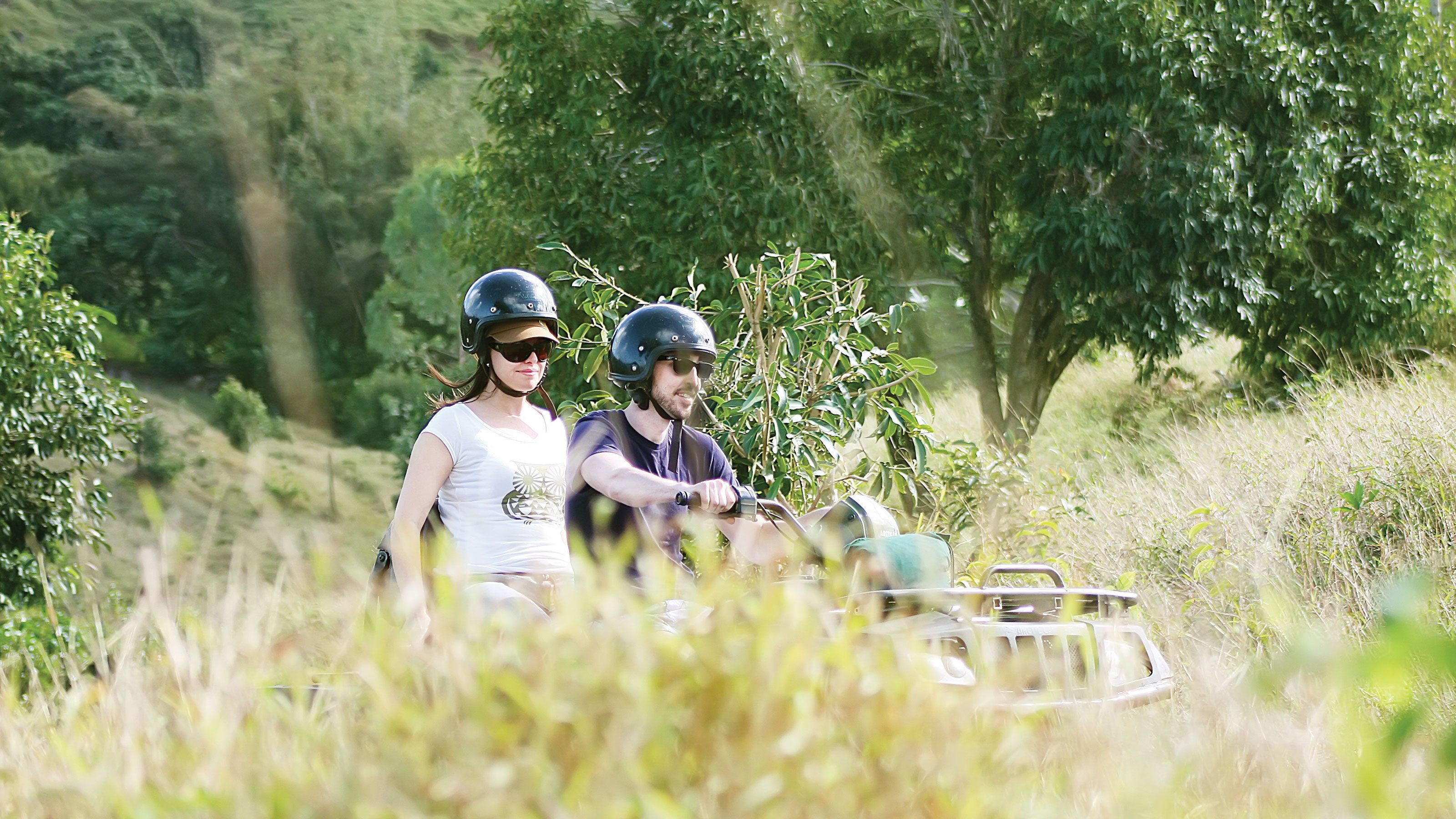 quad bikers trekking through tall grass at the Frederica Nature Reserve