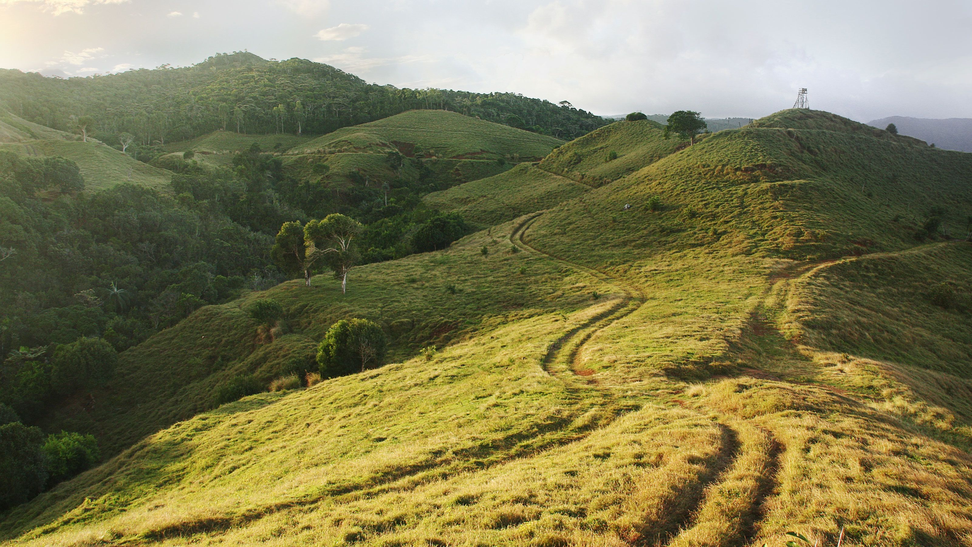 hilly terrain for quad biking at the Frederica Nature Reserve