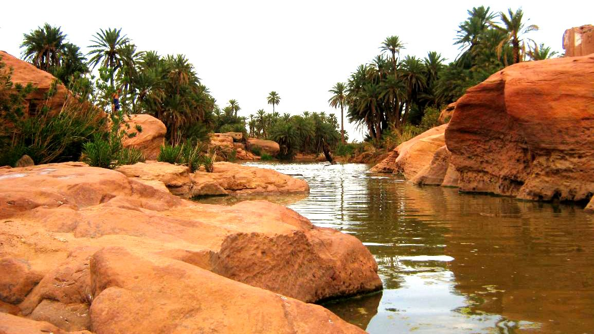 Palm trees line the red rocky bank of the Sous River running past Taroudant