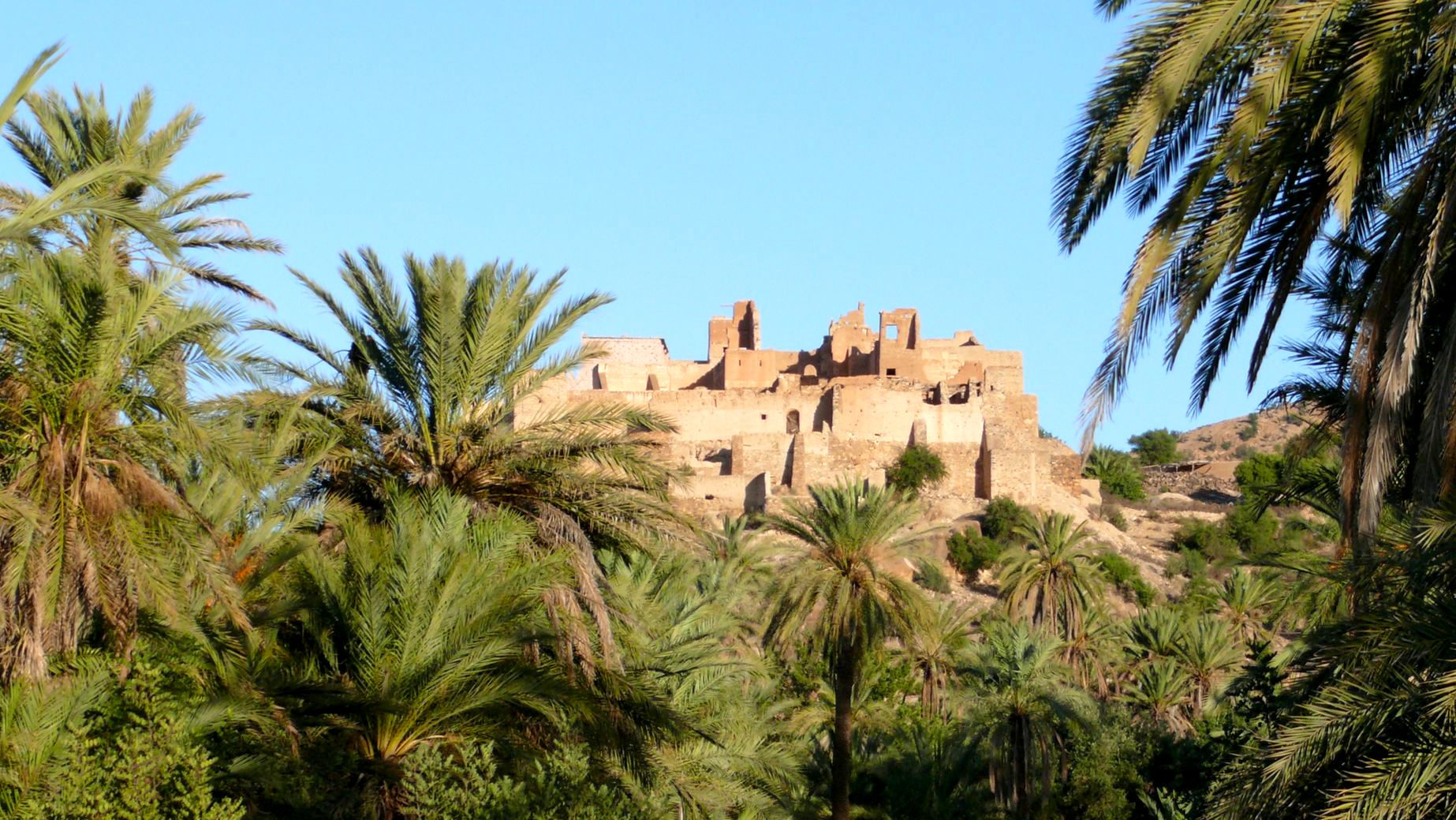 Kasbah overlooking a palm grove in Taroudant