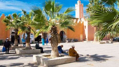 People resting the shade of palm trees near a temple in Agadir