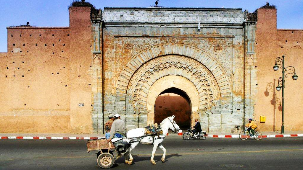 Horse drawn wagon on the street in Marrakech