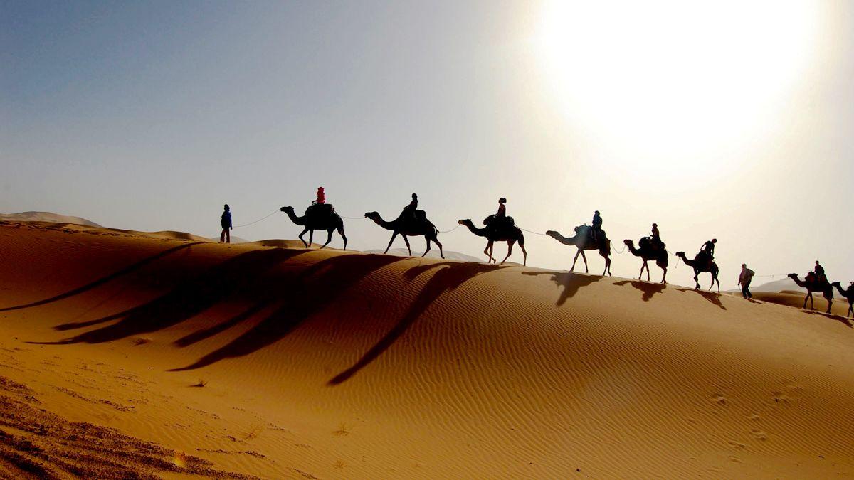 Mini Safari Pre-Saharan Dunes & Massa Nature Reserver