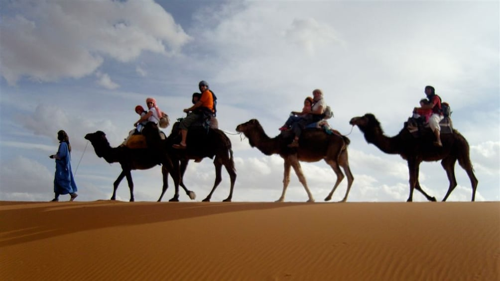 Show item 5 of 5. Group of camels and riders on the sand in Agadir