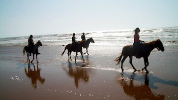 Horse-riding Adventure to the River Souss