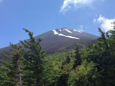 Mount Fuji & Hakone National Park Full-Day Bus Tour