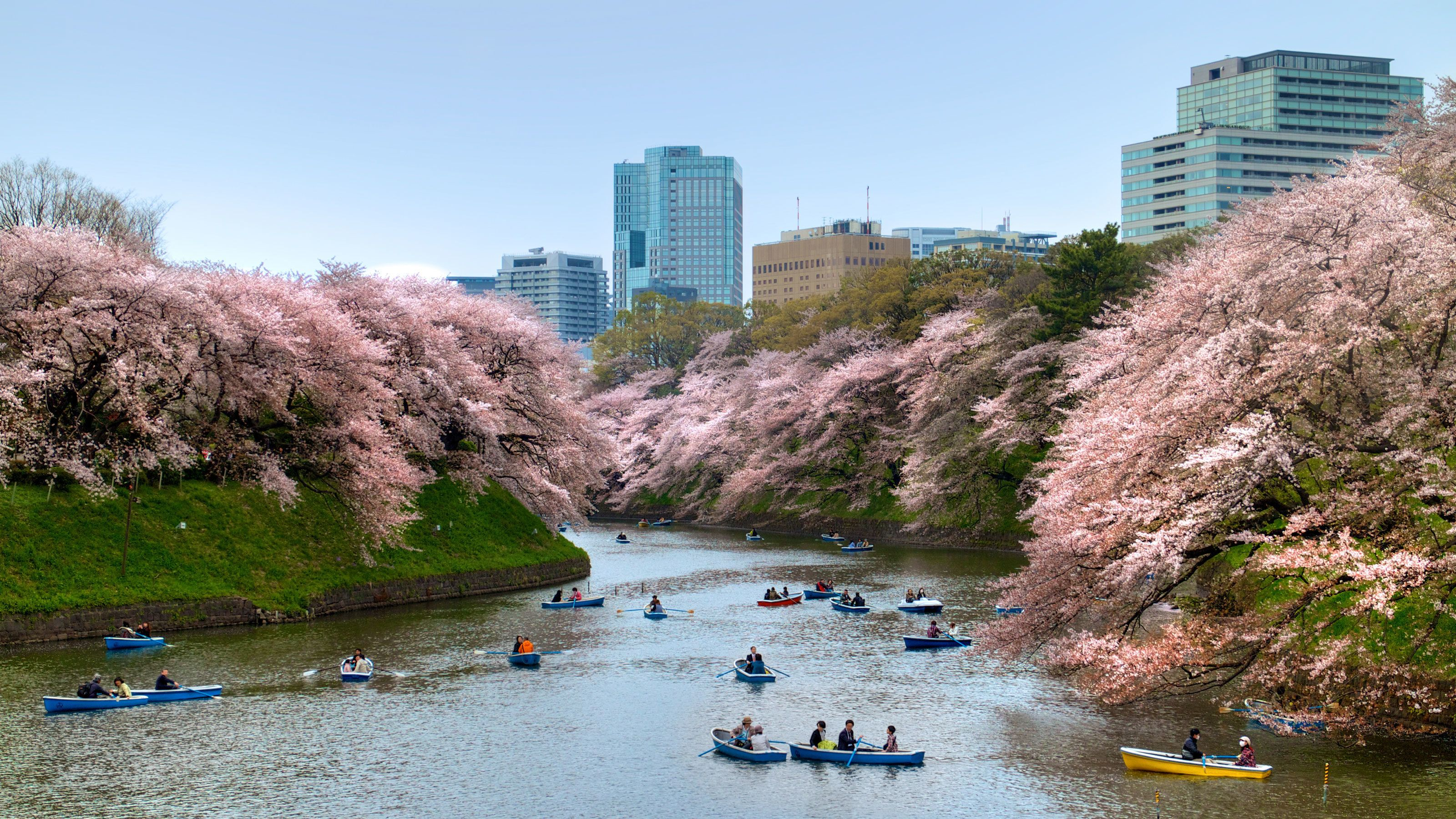 River view in Tokyo