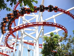 Dreamworld Theme Park Tickets with Roundtrip Transfers