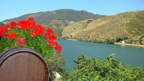 decorated wine barrel at Douro Valley in Portugal