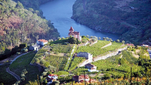 winery establishments atop a hill in Douro Valley