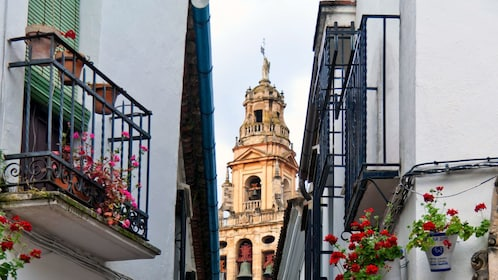 The Calleja de las Flores in Cordoba
