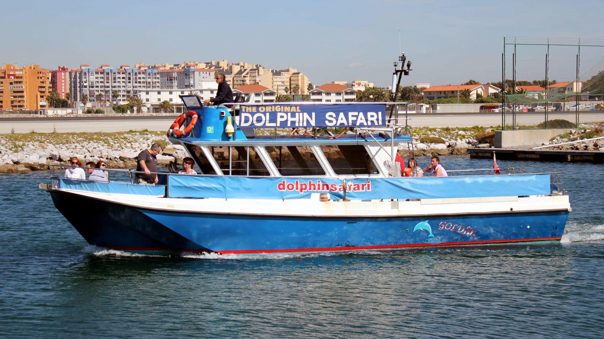aboard the dolphin safari cruise in Malaga