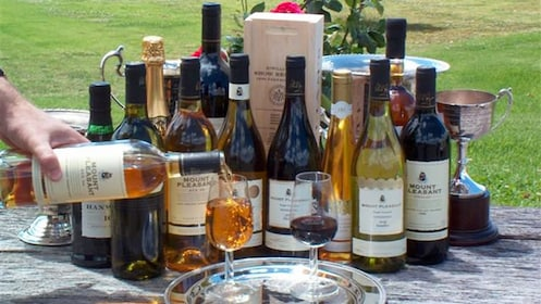 A variety of different wines on display at a Hunter Valley cellars winetasting experience in Australia