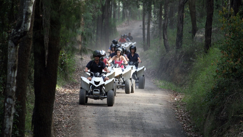 Show item 3 of 5. Guests riding quad-bike ATVs at Glenworth Valley during the day