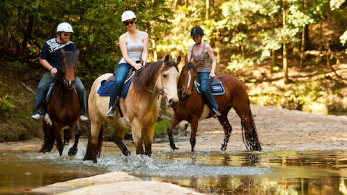 Group of horseback riders at a water bank in Glenworth Valley