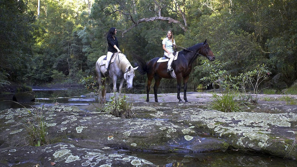 Show item 3 of 6. Two ladies on a horseback riding adventure at Glenworth Valley