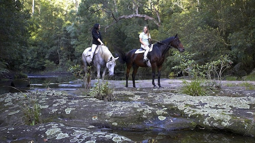Two ladies on a horseback riding adventure at Glenworth Valley