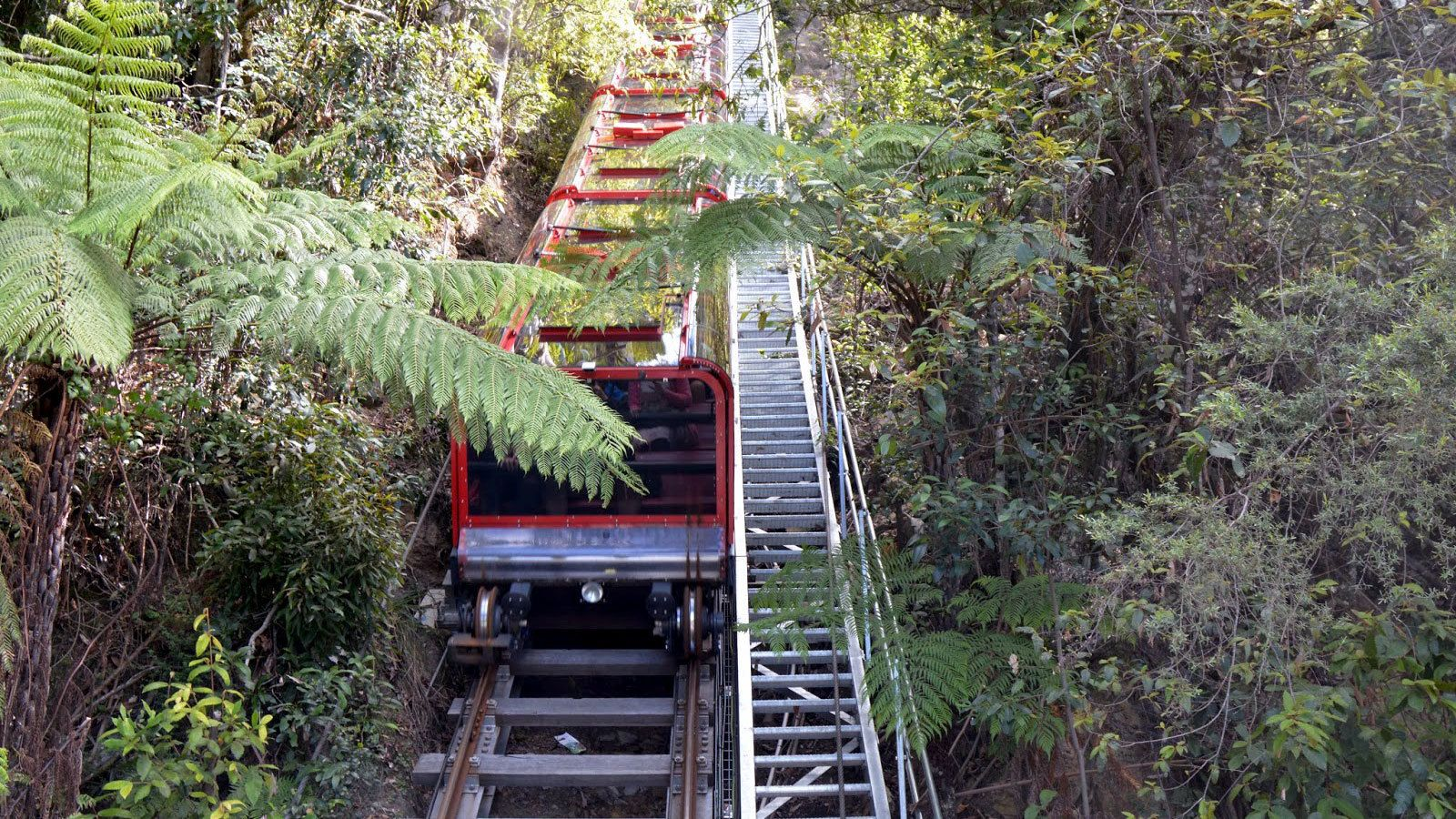 The Scenic Railway in operation giving visitors and amazing view of the Blue Mountains in Australia