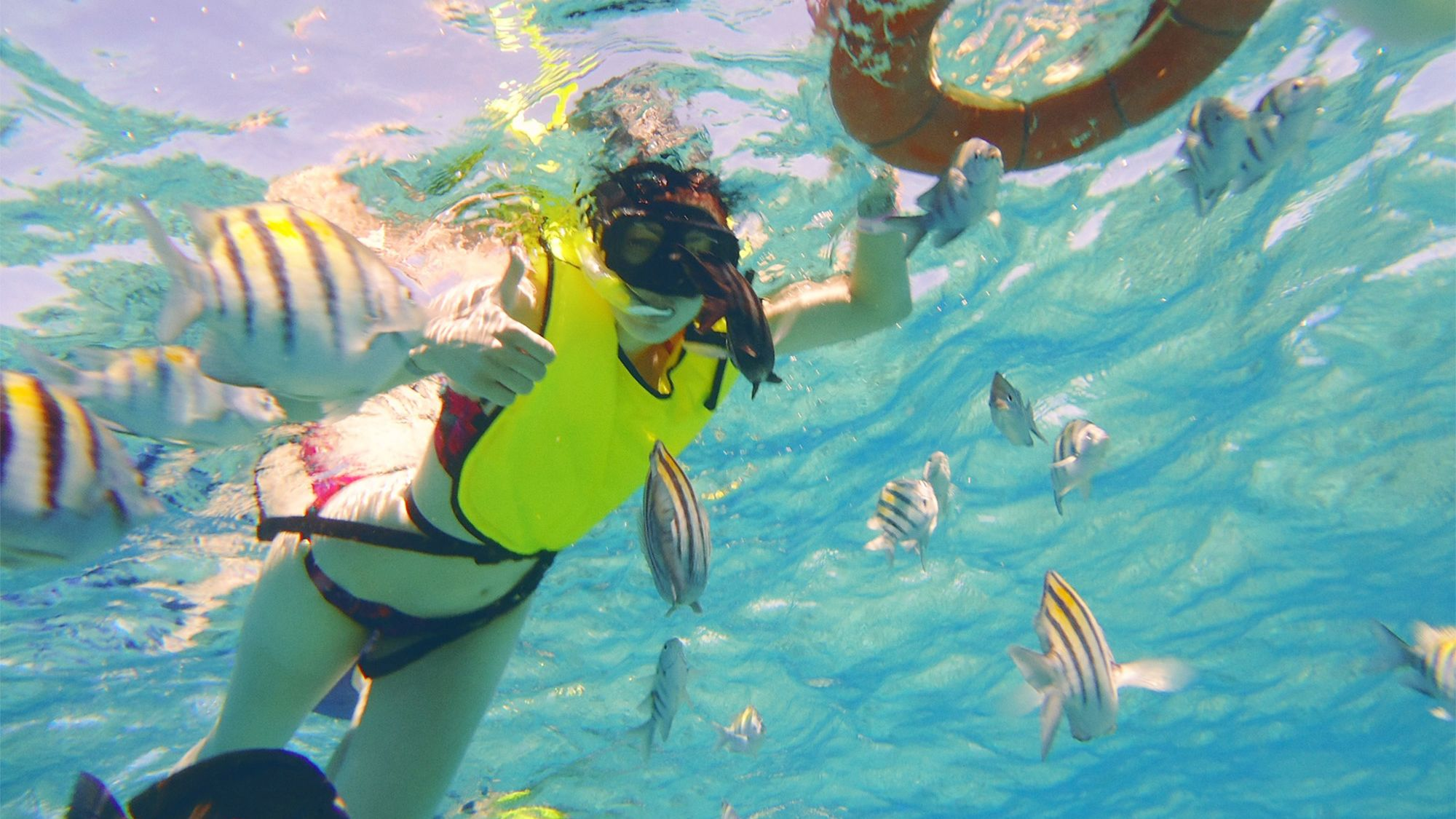 Snorkeler surrounded by fish in Cozumel