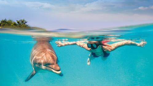 Woman snorkeling with a dolphin in Cancun