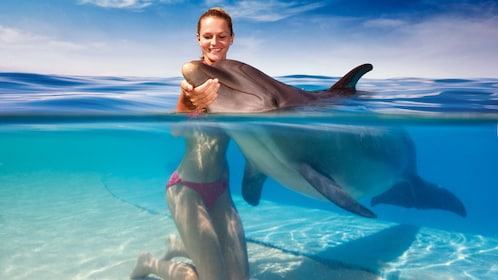 Woman in the water holding a dolphin under the nose in Cancun