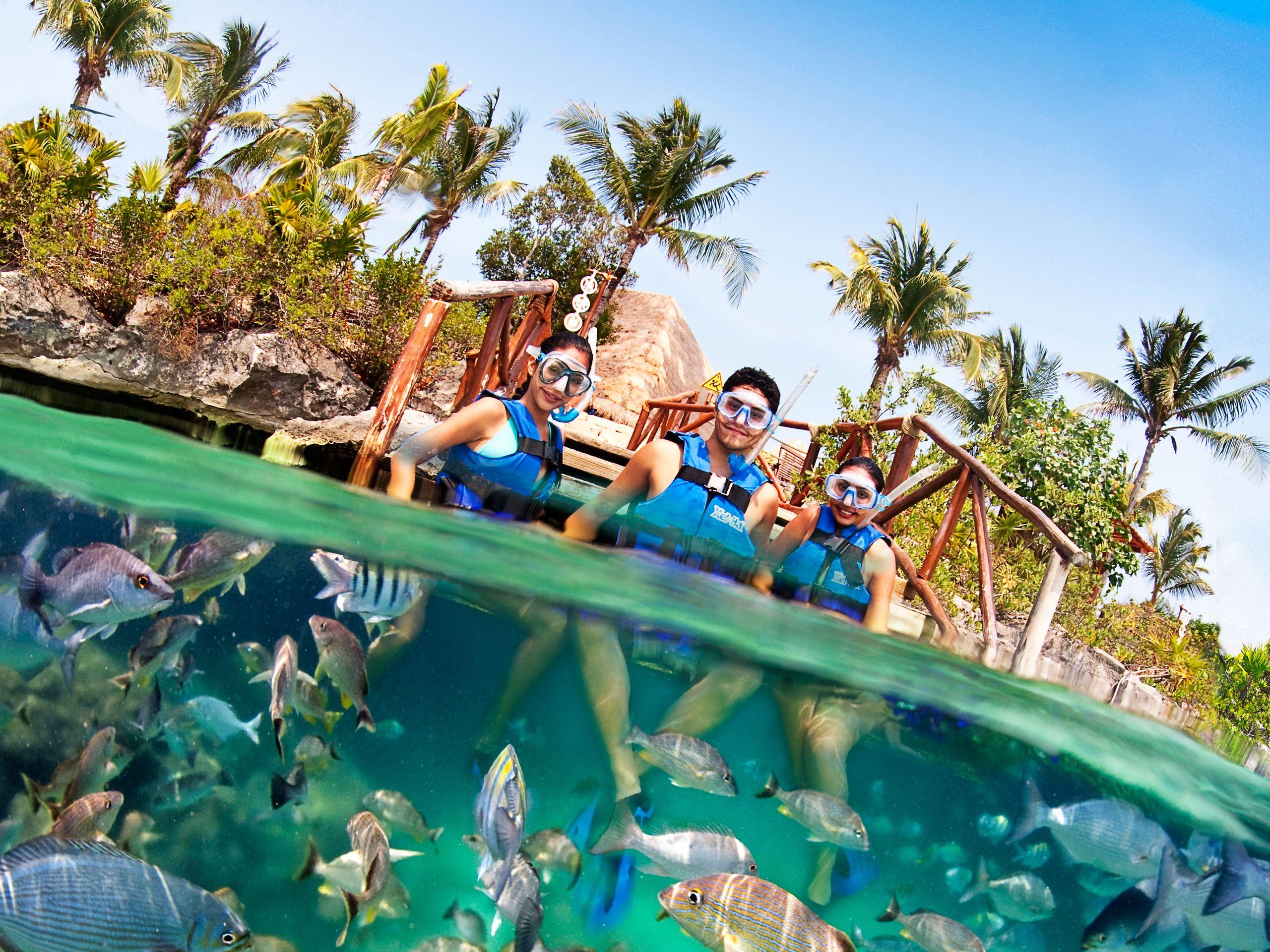 snorkel-1.jpg