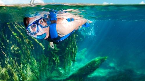 Scuba diving in cancun