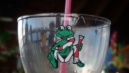 Cup with the Senor Frogs logo in Cancun