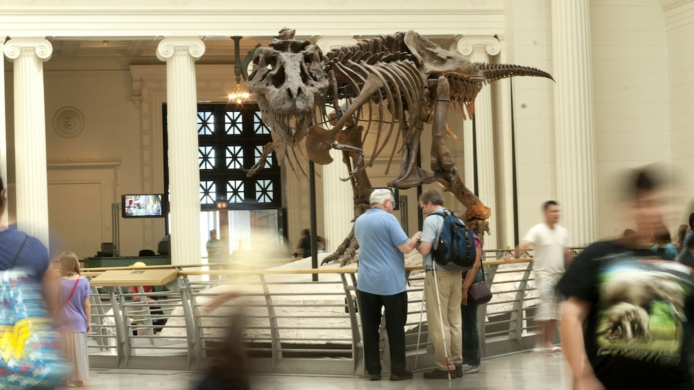 Cargar ítem 3 de 9. Chicago CityPASS: Admission to Top 5 Chicago Attractions